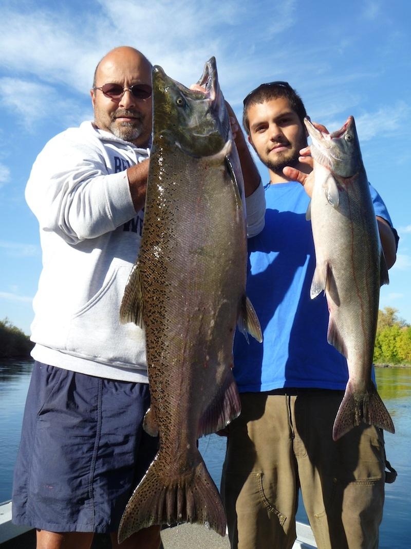 sacramento river salmon fishing guide