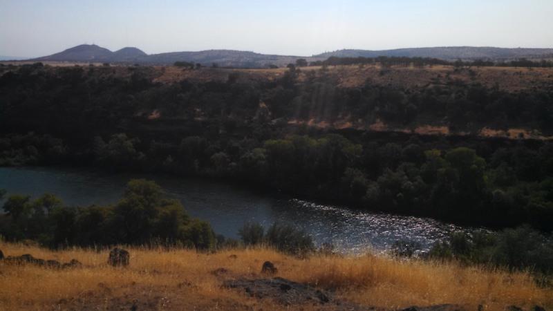 sacramento river fishing red bluff