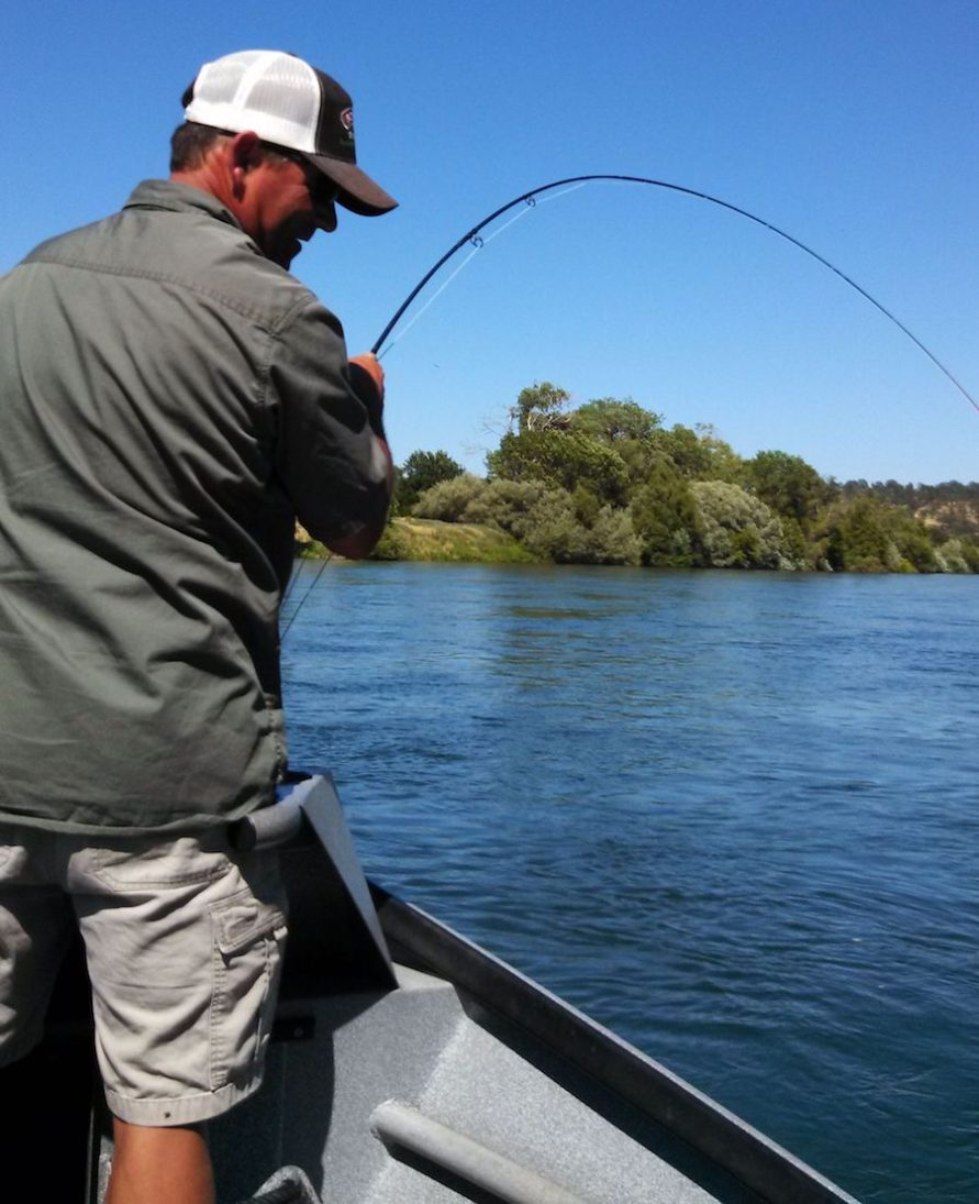 fly fishing guide lower sacramento river