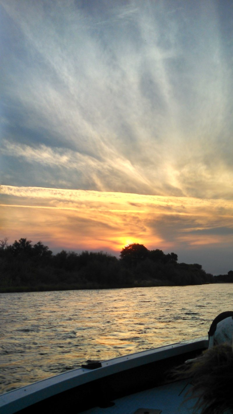sacramento river salmon fishing guide