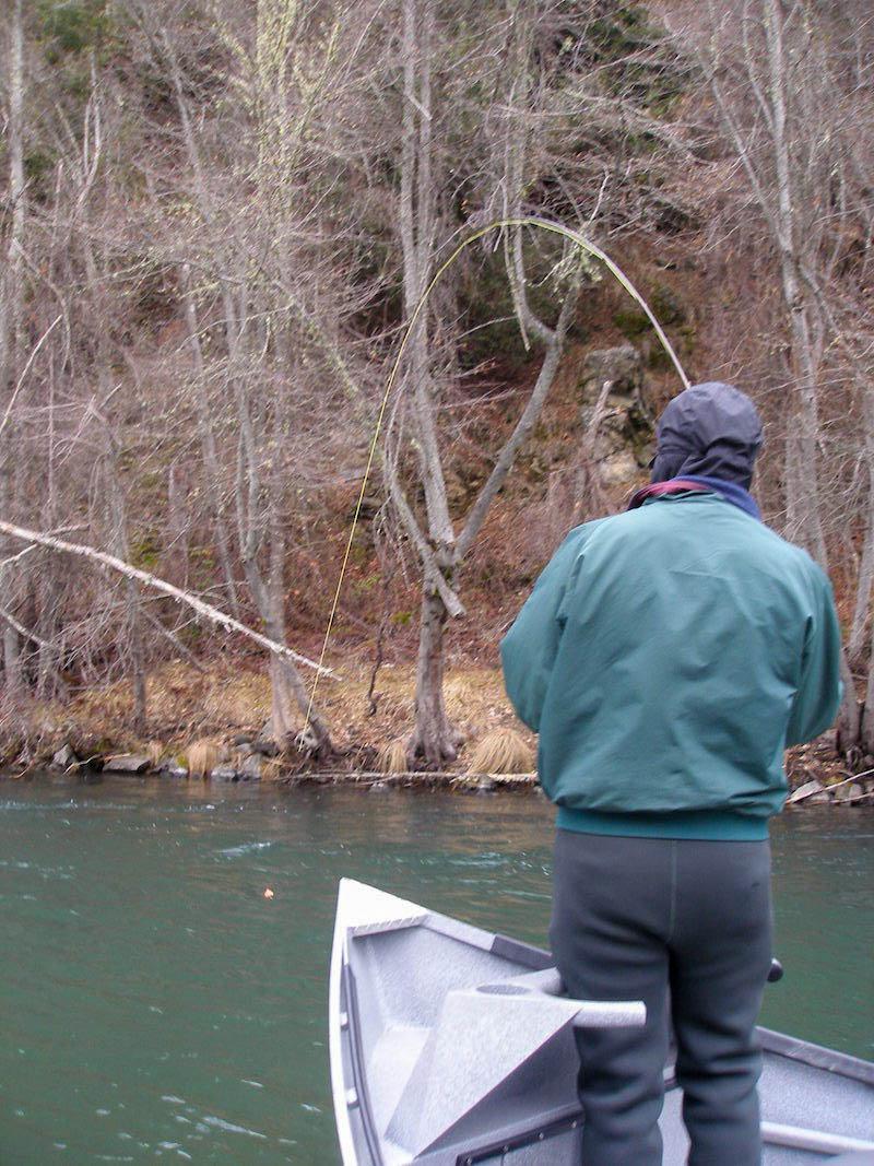 trinity river fly fishing guide steelhead