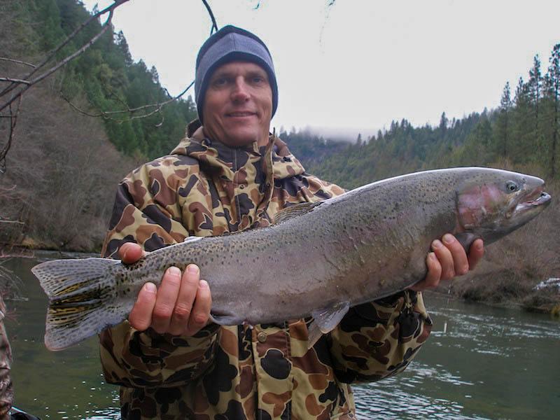 trinity river fishing guide steelhead