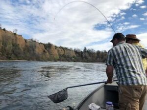 fly fishing for trout near redding ca